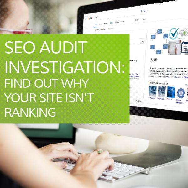SEO Audit Investigation