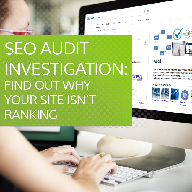 SEO Audit Investigation