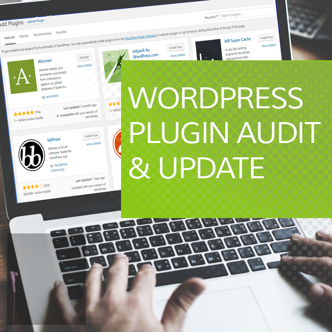 WordPress Plugin Audit and Update