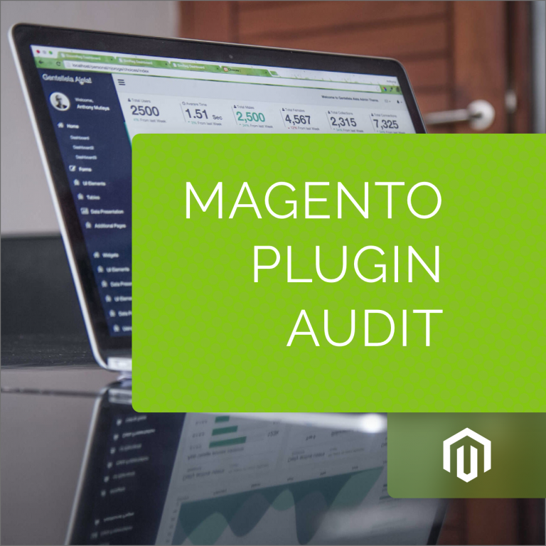 Magento Plugin Audit and Update
