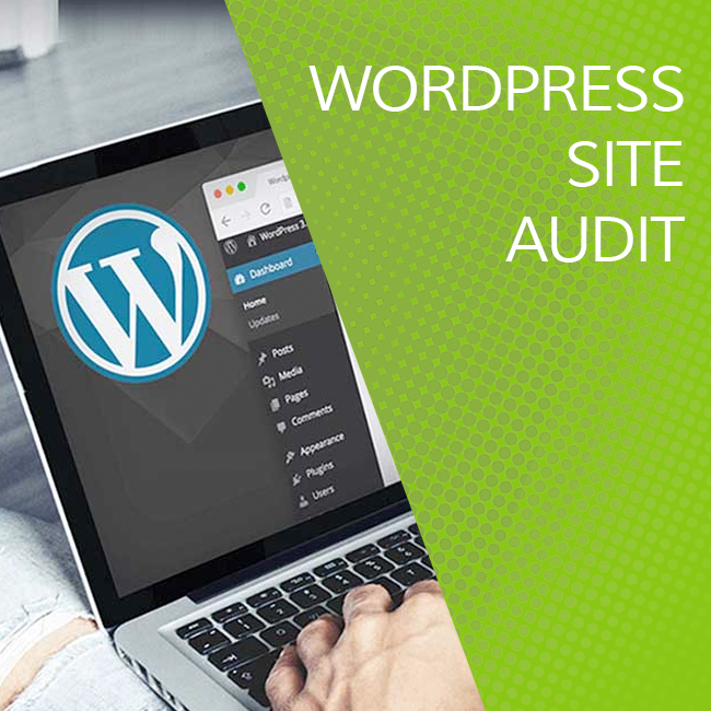 Wordpress Site Audit